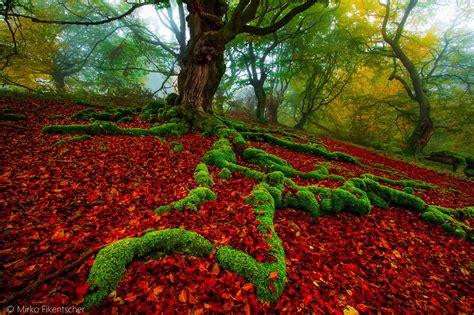 Colorful Landscapes By Mirko Fikentscher
