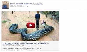 Giant snake swallows zookeeper video scam spreads on Facebook