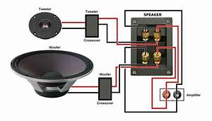 Remee Speaker Wire Vs Audioquest  Or Other Brand