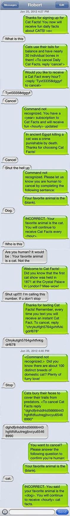 cat facts prank cat facts text on