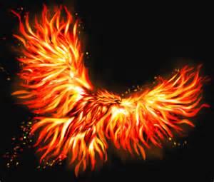 Phoenix Bird Fire Art