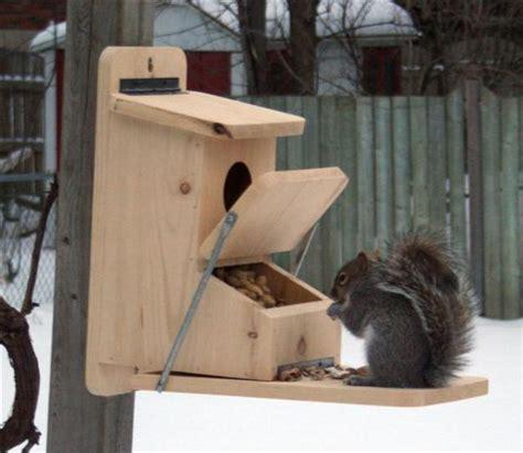 diy yard decorations squirrel house designs  build  feed animals  winter