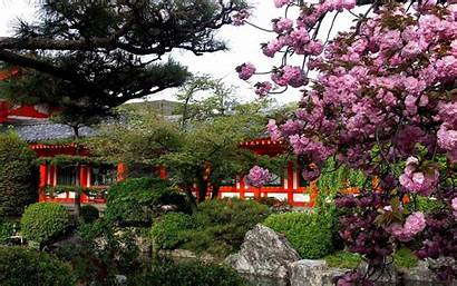 Spring Japanese Japan Wallpapers Definition Widescreen Springtime