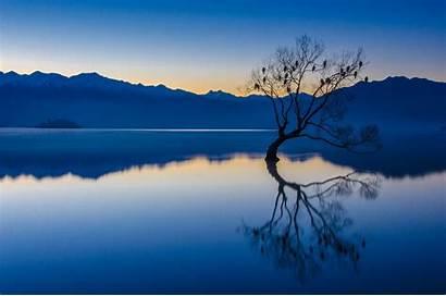Hour Lake Nature Calm Trees Reflection Landscape