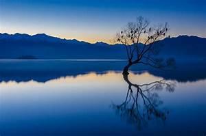 Nature, Landscape, Calm, Bluewater, Trees, Lake