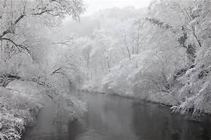 Rasenpflege Nach Dem Winter : auf der suche nach dem winter 2018 naturfotogalerie holger doernhoff ~ Orissabook.com Haus und Dekorationen