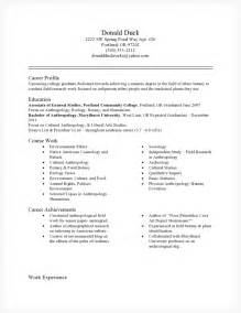 exle resume skills and abilities sles of resumes