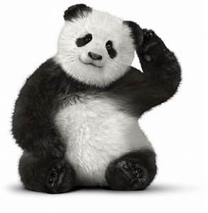 Clipart Free Giant Panda Bear Red Panda Telus Customer Service Bear