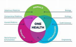 Unique One Health Collaborations
