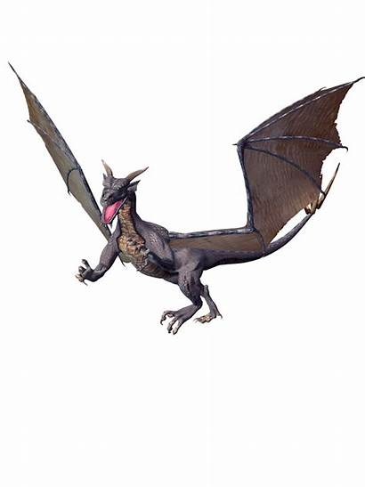 Dragon Transparent Realistic Background Clipart Drago Resolution