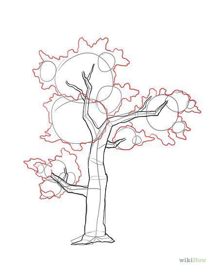 drawing trees step  step google search tree drawings