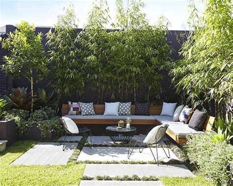 backyard bamboo the 25 best bamboo garden ideas on pinterest bamboo screening bamboo screen garden and