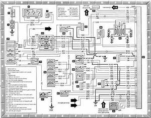 Peugeot 406 V6 Wiring Diagram Engine Image For User