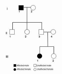 Pedigree Analysis: A Family Tree of Traits