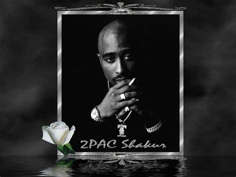 pac wallpapers  pixelstalknet