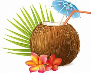 Cute Coconut Cartoon | www.pixshark.com - Images Galleries ...
