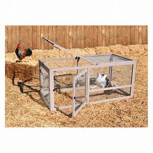 precision petr products universal chicken pen and run With precision pet products dog pen