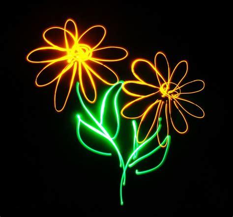 light drawing images  pinterest light