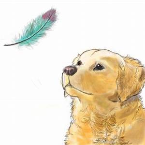 The gallery for --> Falling Feather Sketches