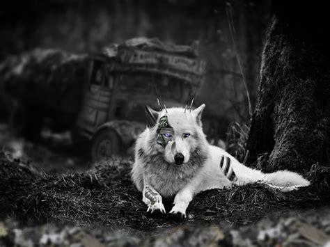 Cybor-wolf By Pyc-art On Deviantart