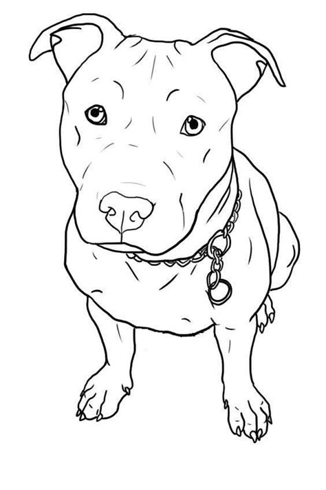 Pin by Tammie LaFontaine on I Love My Pits | Pitbull drawing, Dog tattoos, Animal drawings