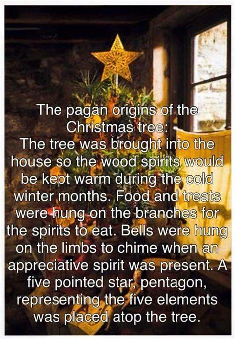 28 best christmas tree pagan roots karin kaufman s