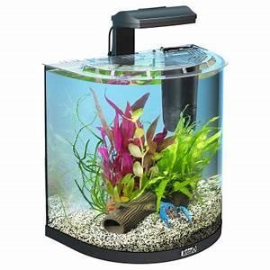 Aquarium Einrichten 60l : tetra aquaart explorer line halfmoon aquarium komplett set ~ Michelbontemps.com Haus und Dekorationen