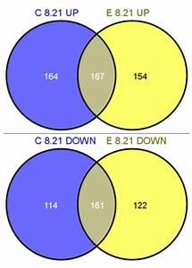 Venn Diagram  Venn Diagram Illustrating The Relationship