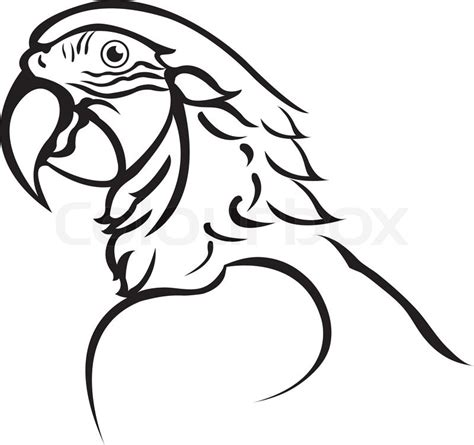 parrot clipart black and white black and white parrot pictures to pin on