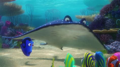 hd screencaps  finding dory  wallpapers