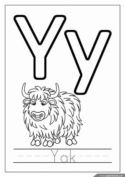 Coloring Alphabet Letter Pages Yak Letters Pdf