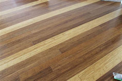 zealsea timber flooring gold coast brisbane labrador