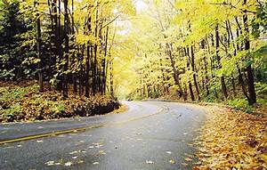 Where to See the Best Fall Colours Near Toronto   where.ca