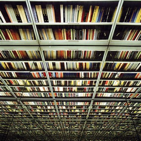 nicolas grospierre s infinite library book patrol a