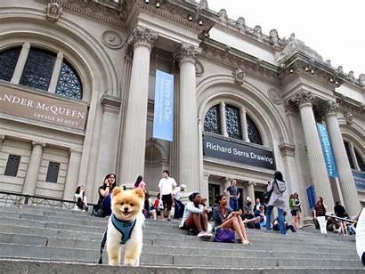 Metropolitan Museum Museums Travellers Choice Aspirantsg 5th