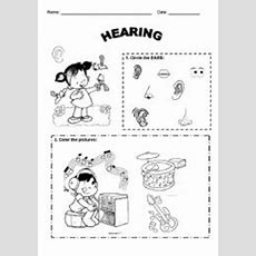 English Teaching Worksheets Face And Body