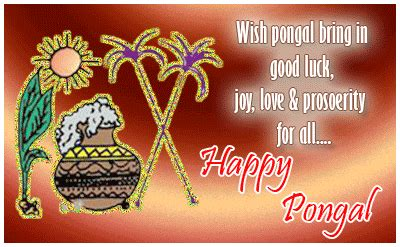 pongal  tamil thai pongal wishes wallpapers
