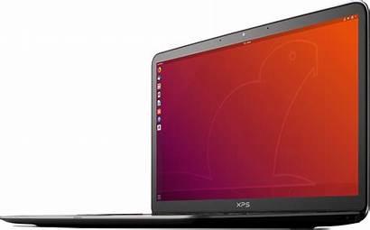 Ubuntu Laptop Desktop Operating System Pc Server