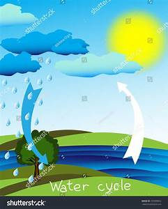 Simple Clear Diagram Water Cycle Vector Stock Vector