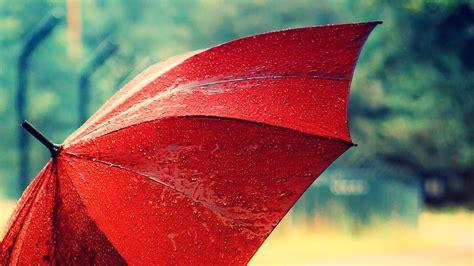 Wallpaper Umbrella by Umbrella Wallpaper High Definition High Quality