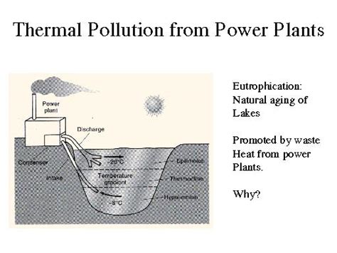 thermal pollution  power plants