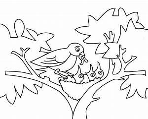 Feeding birds coloring pages Bird activity