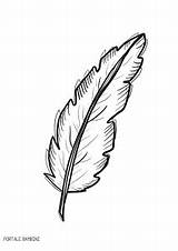Feather Coloring Pages Print Printable Bambini sketch template