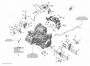Ski Doo 2011 Mx Z - Mxz Tnt 600ace  Engine