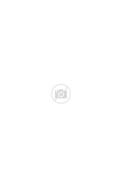 Shinola Tote Leather Lyst
