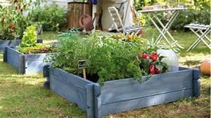 Consejos para tener un huerto en casa veoverde for 5 cultivos faciles para empezar un huerto en casa