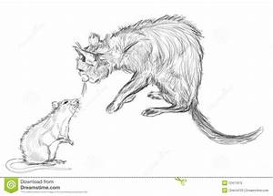 Cat And Rat Royalty Free Stock Photo