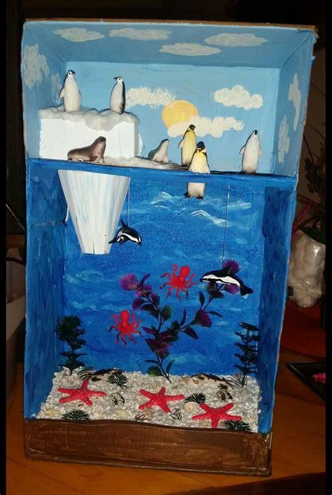 arctic habitat diorama  grade project lgm diy