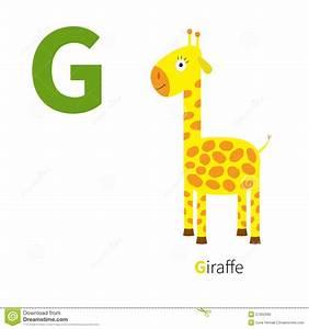 Animal En G : letter g giraffe zoo alphabet english abc with animals ~ Melissatoandfro.com Idées de Décoration