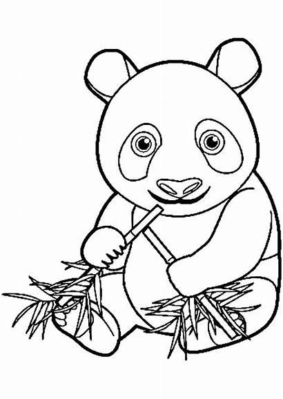 Coloring Pandas Pages Kawaii Chine Coloriage Dessin